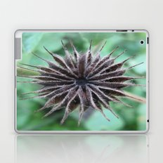 beauty in the mundane - garden weed Laptop & iPad Skin