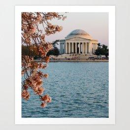 Cherry Blossoms at the Jefferson Art Print