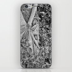 Strangler fig and boulder in the rain forest iPhone & iPod Skin