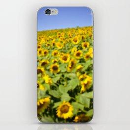 Summer Sunflower Love II iPhone Skin