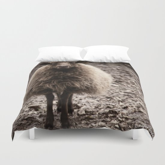 Sheep Stare Duvet Cover