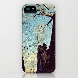 Winter Walking iPhone Case