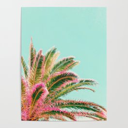 Fiesta palms Poster