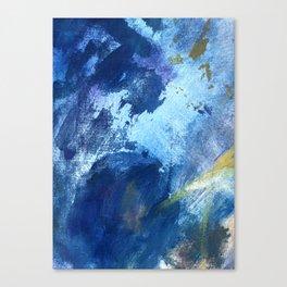 fine art 9 Canvas Print