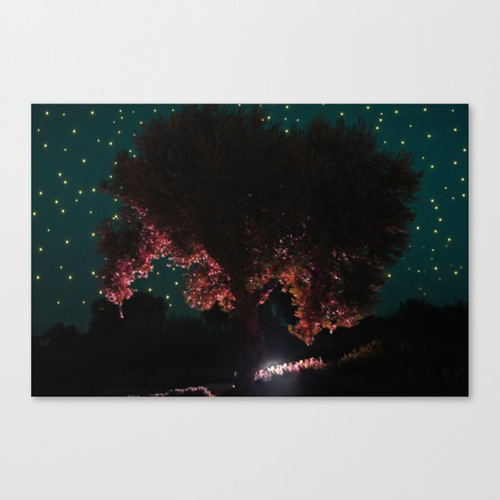 Olive Tree | Niarchos Foundation Cultural Center | Canvas Print