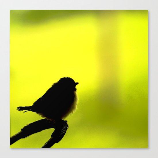 Baby Bird In Early Summer  Canvas Print