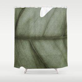 bruce vein Shower Curtain