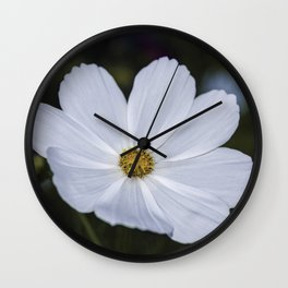 White Cosmos Wall Clock