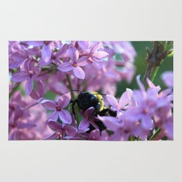 Busy Bee in Lilac Art Photography Rug