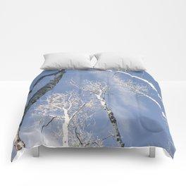 Aspen Tree Sky Comforters