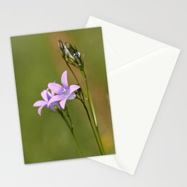 Bluebell Stationery Cards