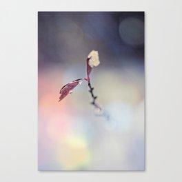 ice beads I Canvas Print