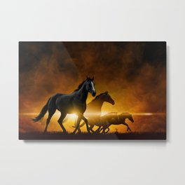 Wild Black Horses Metal Print