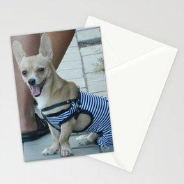 Nice dog Stationery Cards