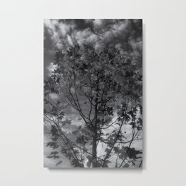 Gray Autumn Metal Print