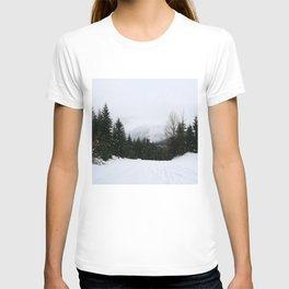 Mist between mountains T-shirt