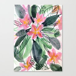 Tropical Flowers: Frangipani Canvas Print