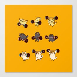 Olympic Lifting Cat Canvas Print