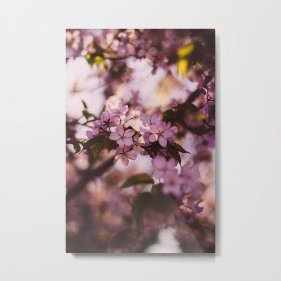 Beauty of Spring III Metal Print