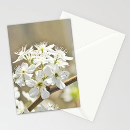 Floral 29 #flower #neutrals Stationery Cards