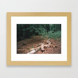 P_05 Framed Art Print