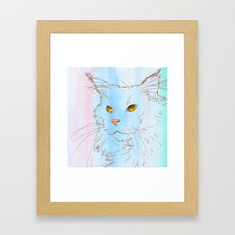 Magnificent Maine Coon Framed Art Print