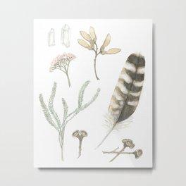 Nature Study One Metal Print