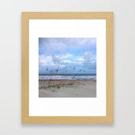 Sea Oats in the Wind Framed Art Print