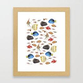 Tropical Fish on White - pattern Framed Art Print