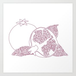 Pomegranate Outline Art Print