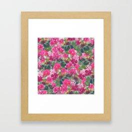 Magenta Geraniums Framed Art Print