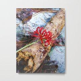 Bump on a Log Metal Print