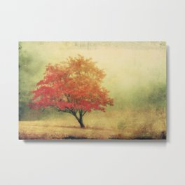 Moods of Autumn Metal Print