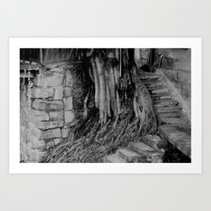 roots and stairs  Art Print