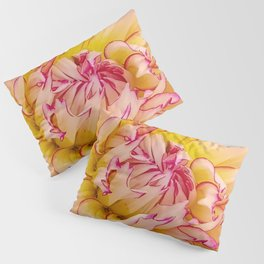 Pink Dahlia with Bright Pink tips Close Up Detail Pillow Sham