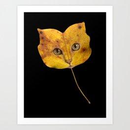 Autumn Cat-1 Art Print