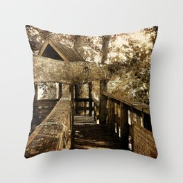 Old Love Story Throw Pillow