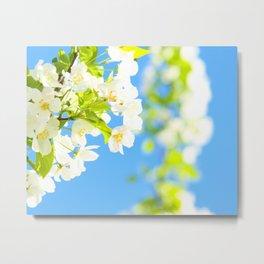 Bright Blooms Metal Print