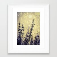 fireflies Framed Art Prints featuring Fireflies by Kanelov