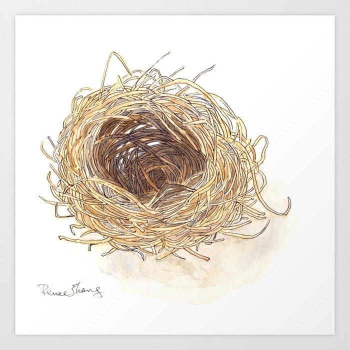 A Bird's Nest Art Print