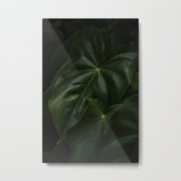 Plant Metal Print