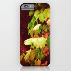 Almost Fall Slim Case iPhone 6s