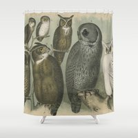 owls Shower Curtains featuring Owls by Connie Goldman
