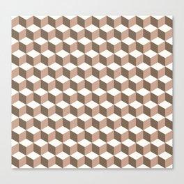 Cube vison Canvas Print