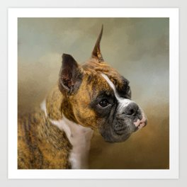 Golden Brindle Boxer Art Print