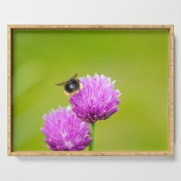 Beehind on a Chive flower Serving Tray