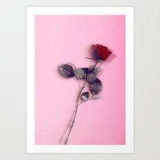 LA ROSE ROUGE Art Print
