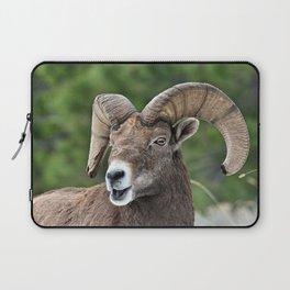 Big Horn Mountain Sheep Laptop Sleeve
