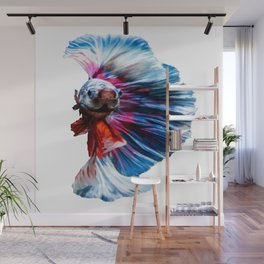 Magnificent Betta Splendens Freshwater Fish Wall Mural