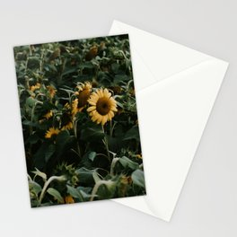 Sunflowers // Stationery Cards
